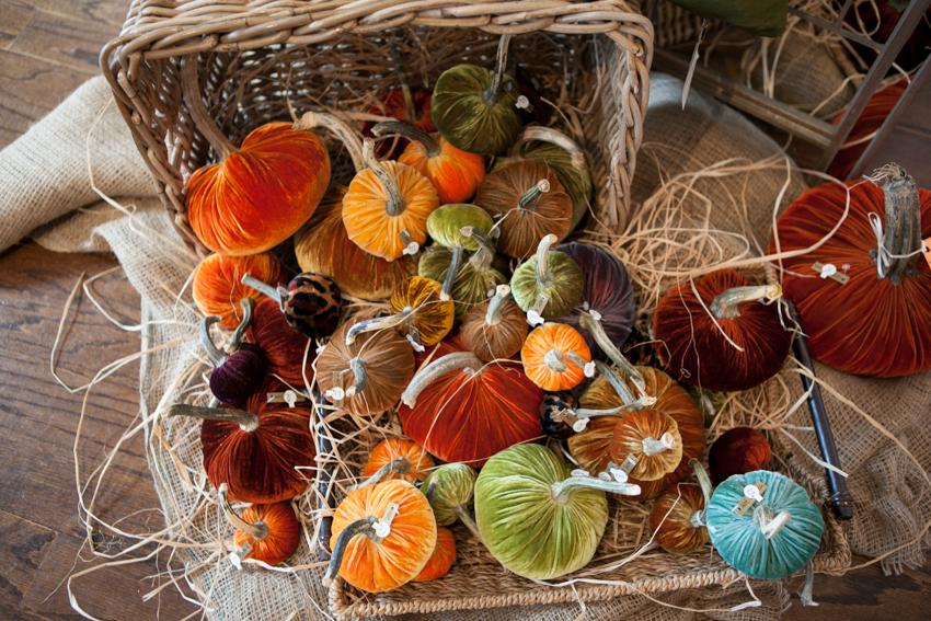 Feather Your Nest Pumpkin
